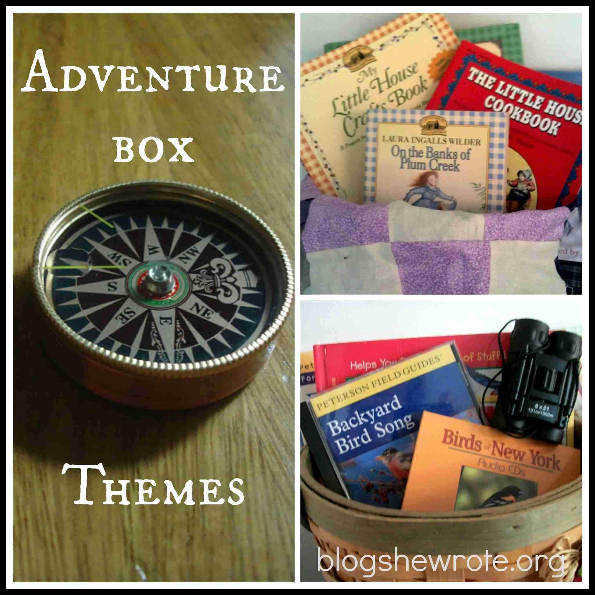 Blog She Wrote: Adventure Box Themes