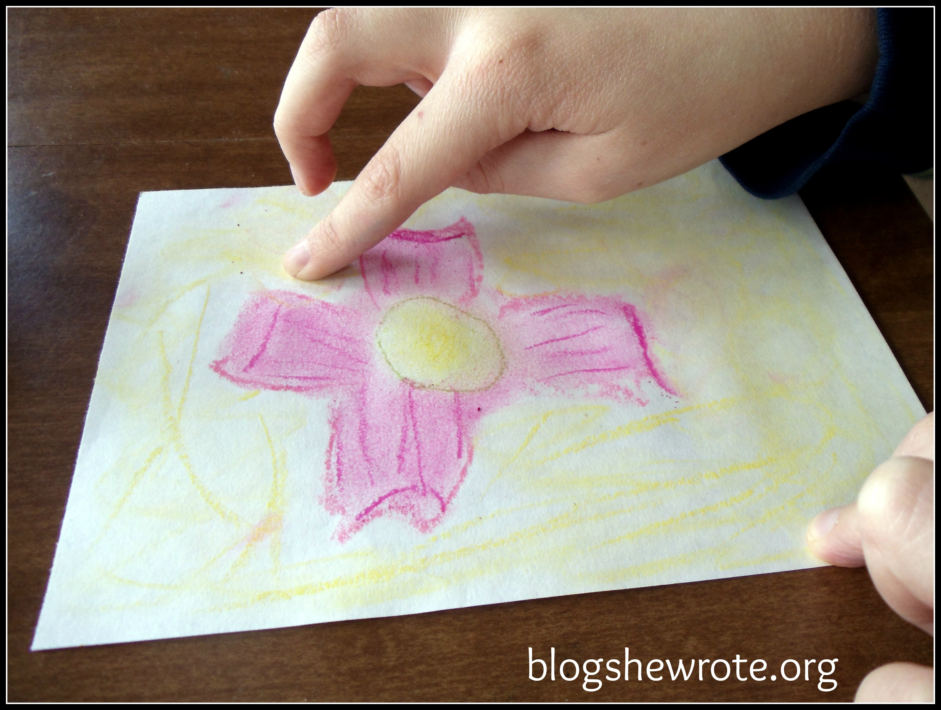 Blog She Wrote: Dogwood Blossoms in Chalk