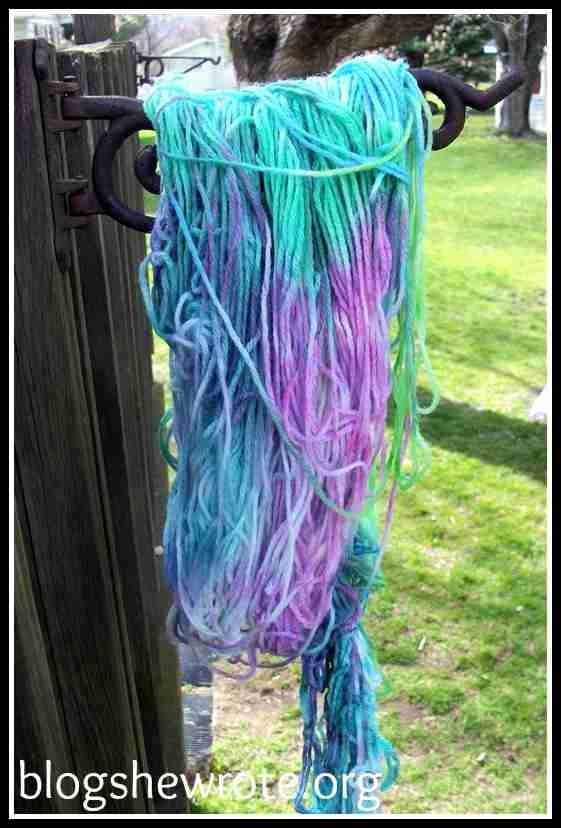 Blog She Wrote: Yarn Adventure