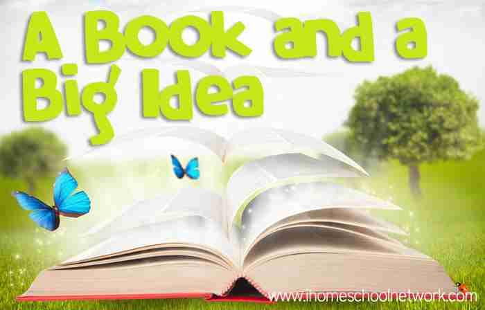Blog, She Wrote: Books & a Big Idea Summer Fun Edition