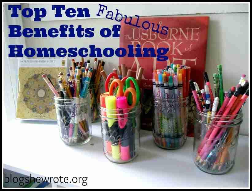 Blog She Wrote: Top Ten Fabulous Benefits of Homeschooling
