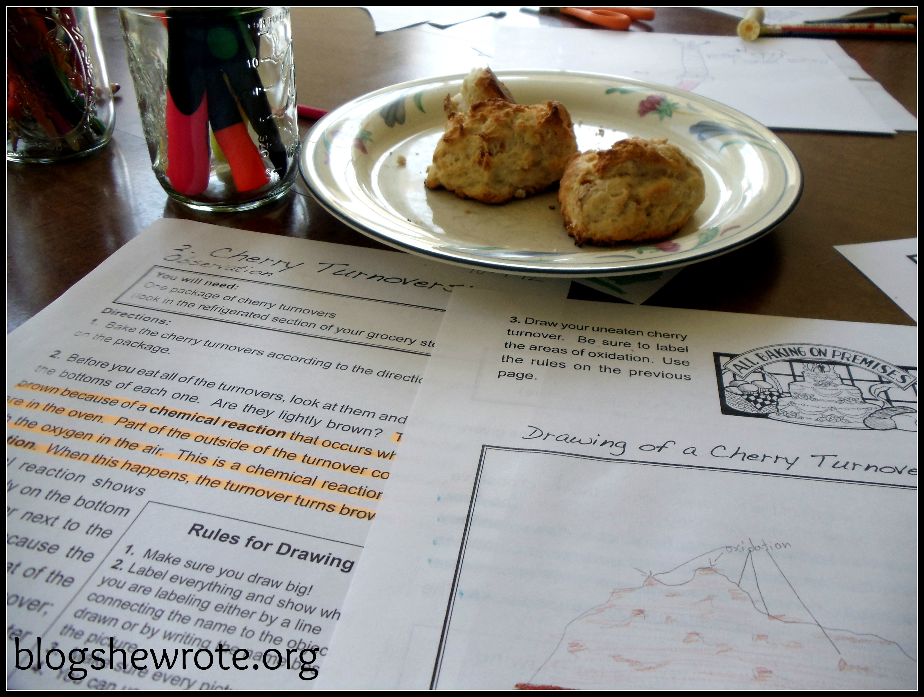 Blog She Wrote: Top Ten Educational Cookbooks on our Shelf