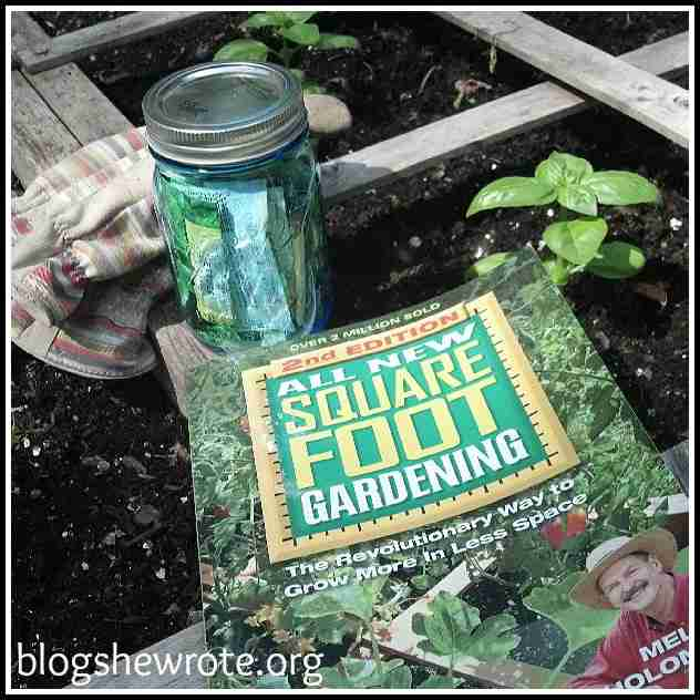 Blog She Wrote: Watching Nature in Your Backyard