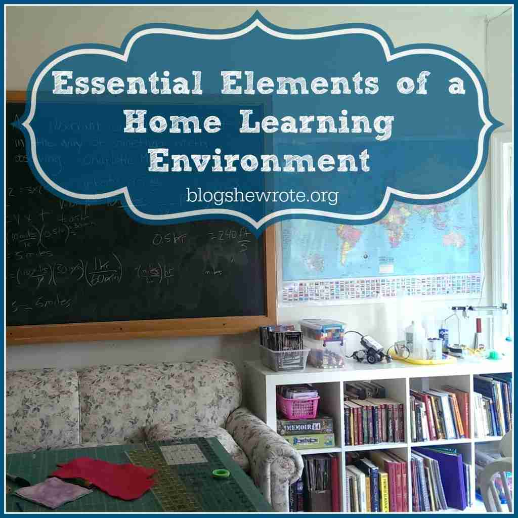 Blog, She Wrote: Essential Elements of a Home Learning Environment