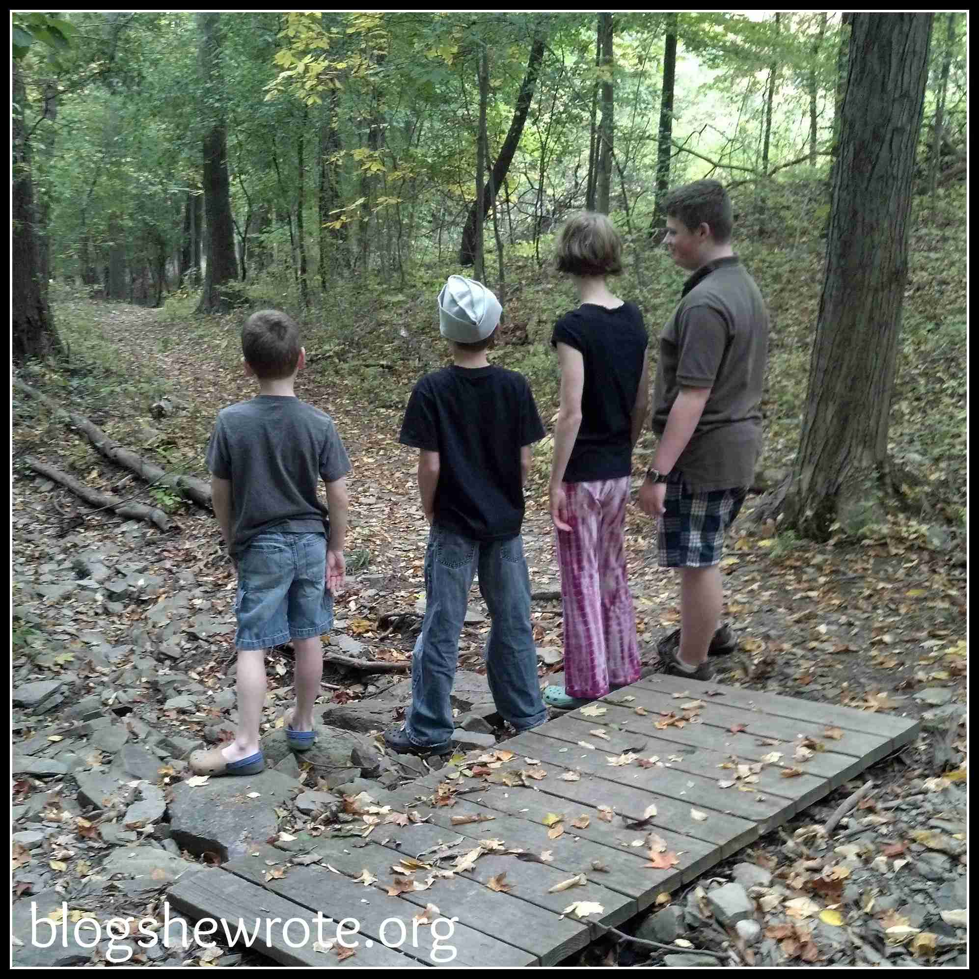 Blog, She Wrote: 5 Ways to Have Fun with Falling Leaves