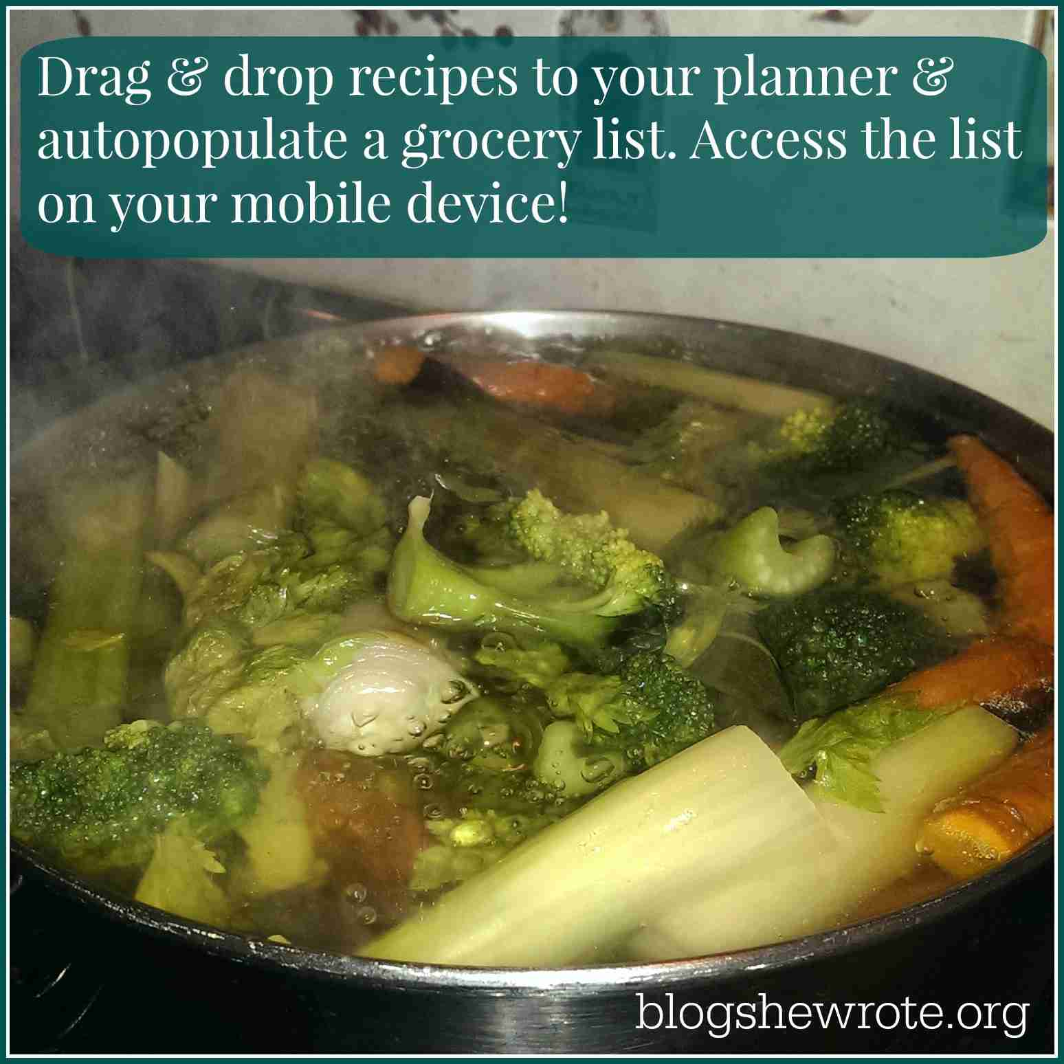 Blog, She Wrote: Meal Planning & Shopping Made Easy with Plan to Eat