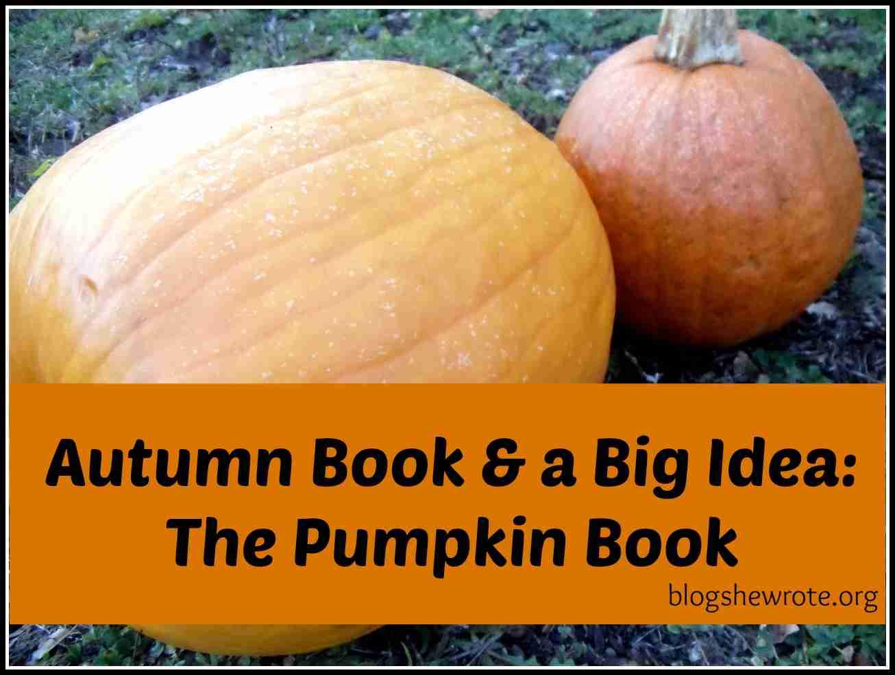 Blog, She Wrote: Autumn & a Big Idea The Pumpkin Book