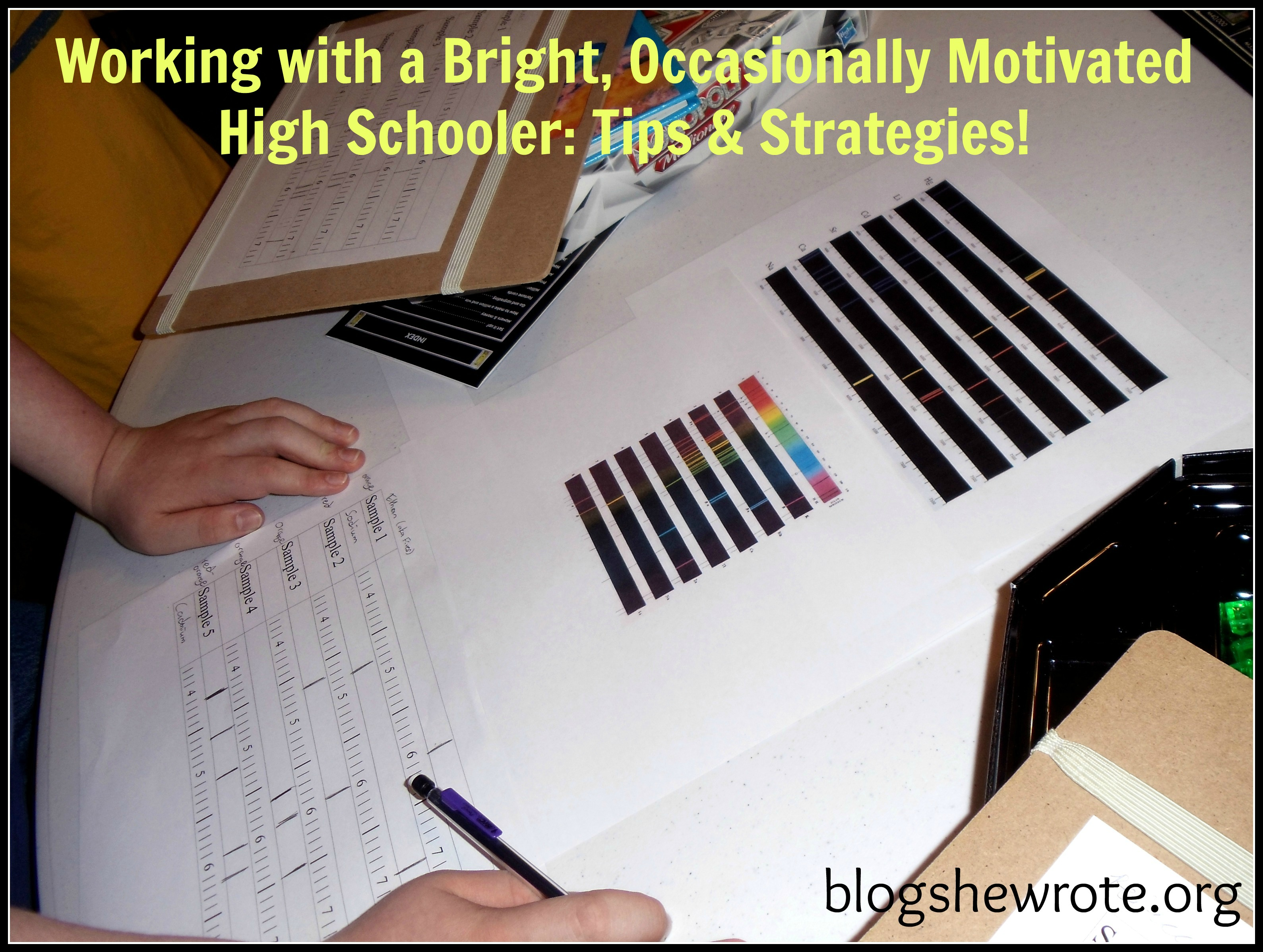 Blog, She Wrote: Working with a Bright, Occasionally Motivated High Schooler