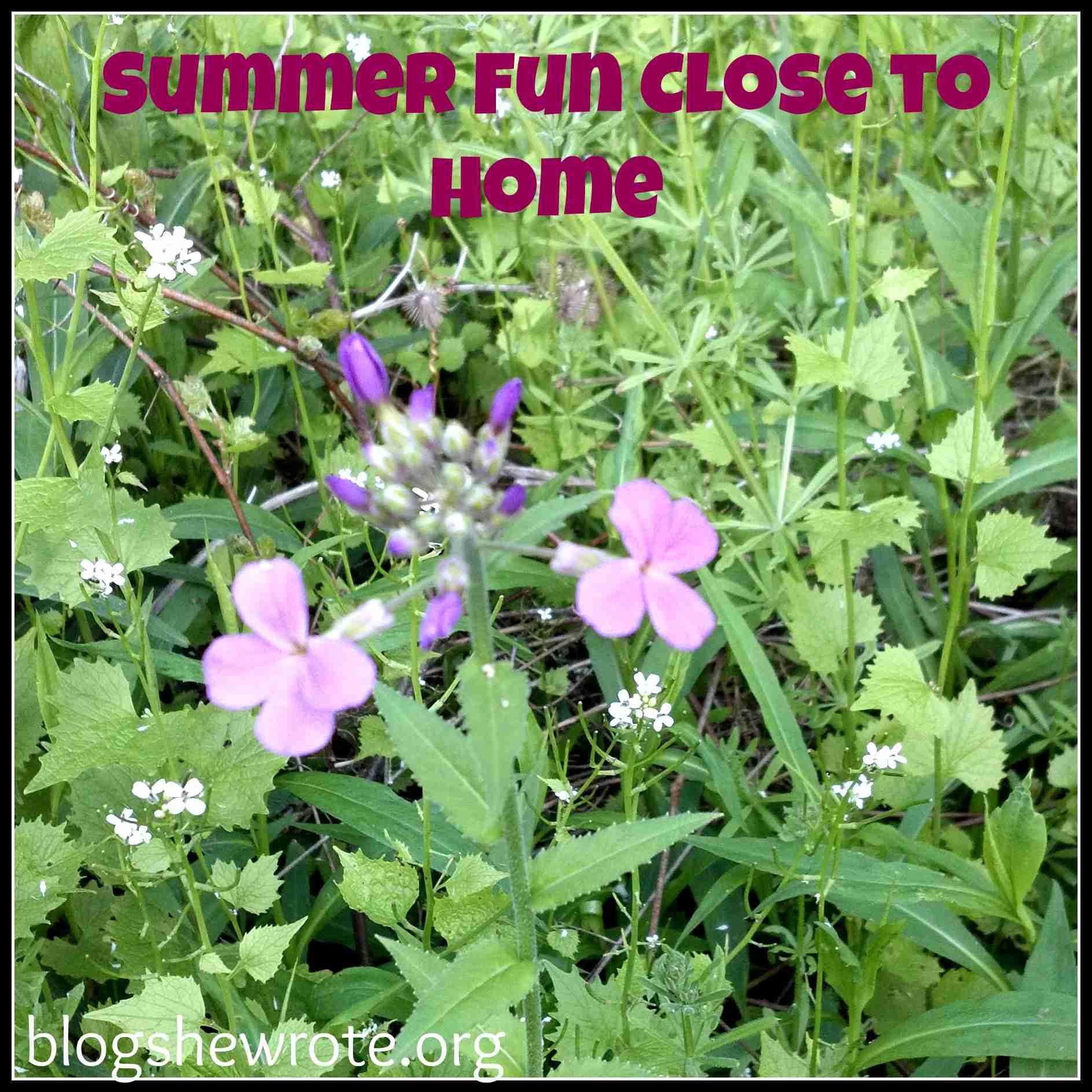 Blog, She Wrote: Summer Fun Close to Home