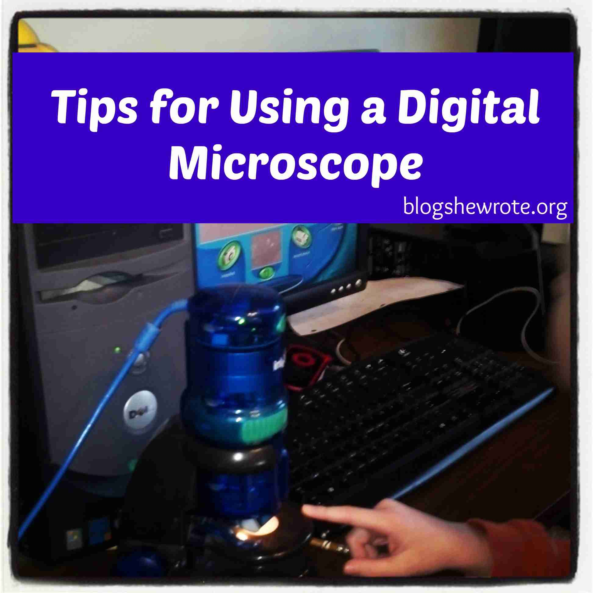 Blogs, She Wrote: Tips for Using a Digital Microscope