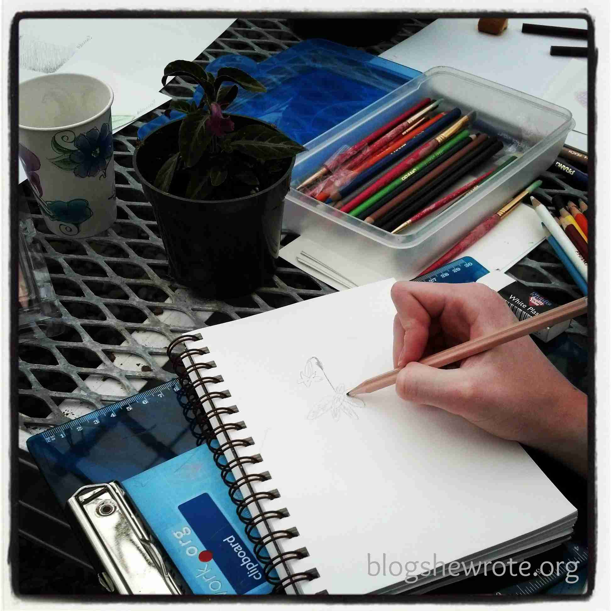 Blog, She Wrote: Tips for Botanical Illustrating