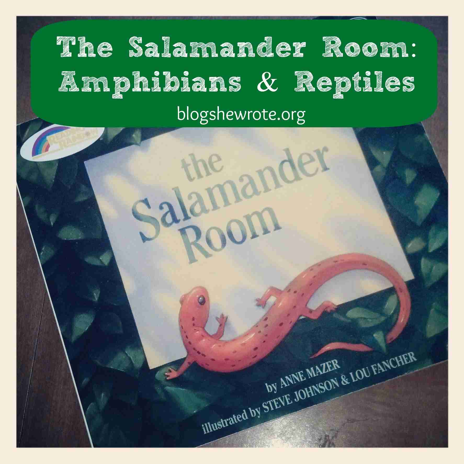 Blog, She Wrote: The Salamander Room- Amphibians & Reptiles