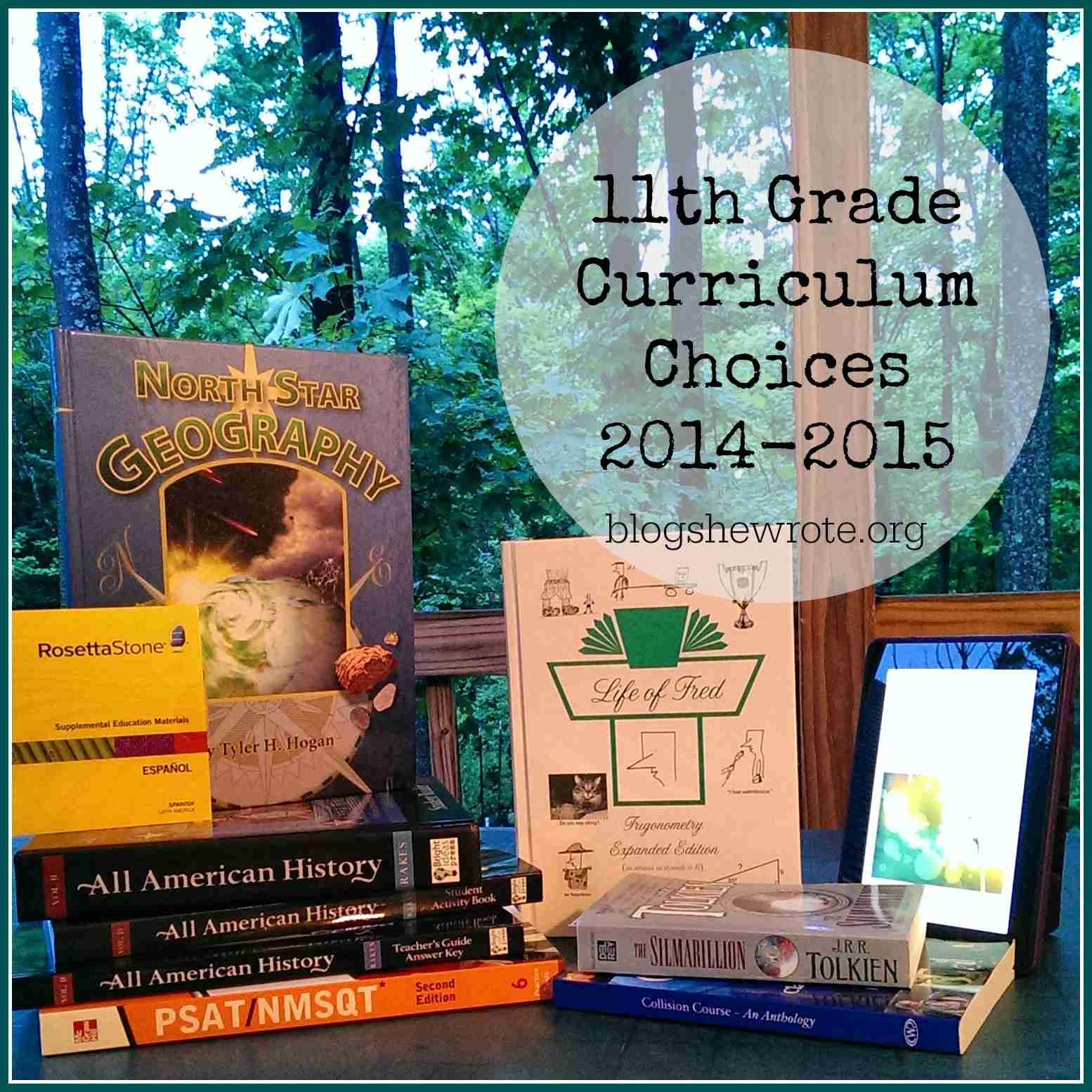 Blog, She Wrote: Homeschool Curriculum Choices 2014-2015