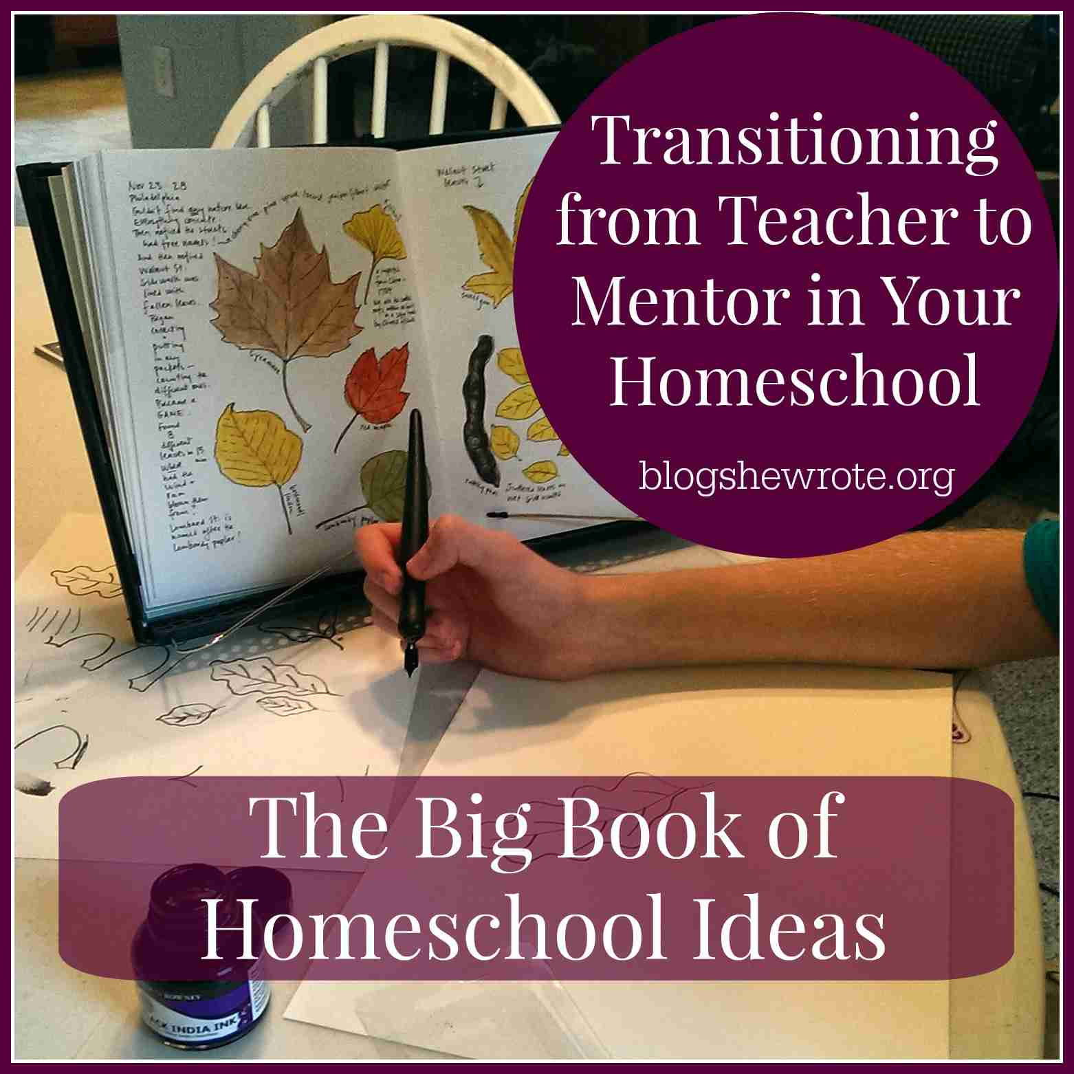 Blog, She Wrote: Transitioning from Teacher to Mentor in Your Homeschool & The Big Book of Homeschool Ideas