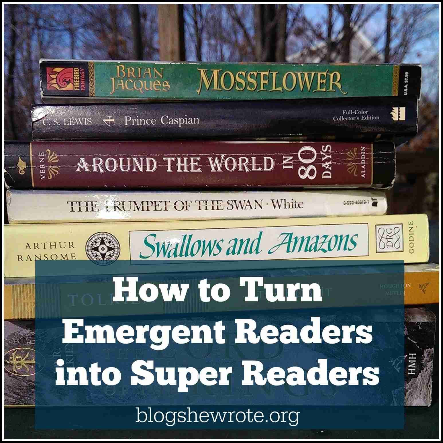 Blog, She Wrote: How to Turn Emergent Readers into Super Readers