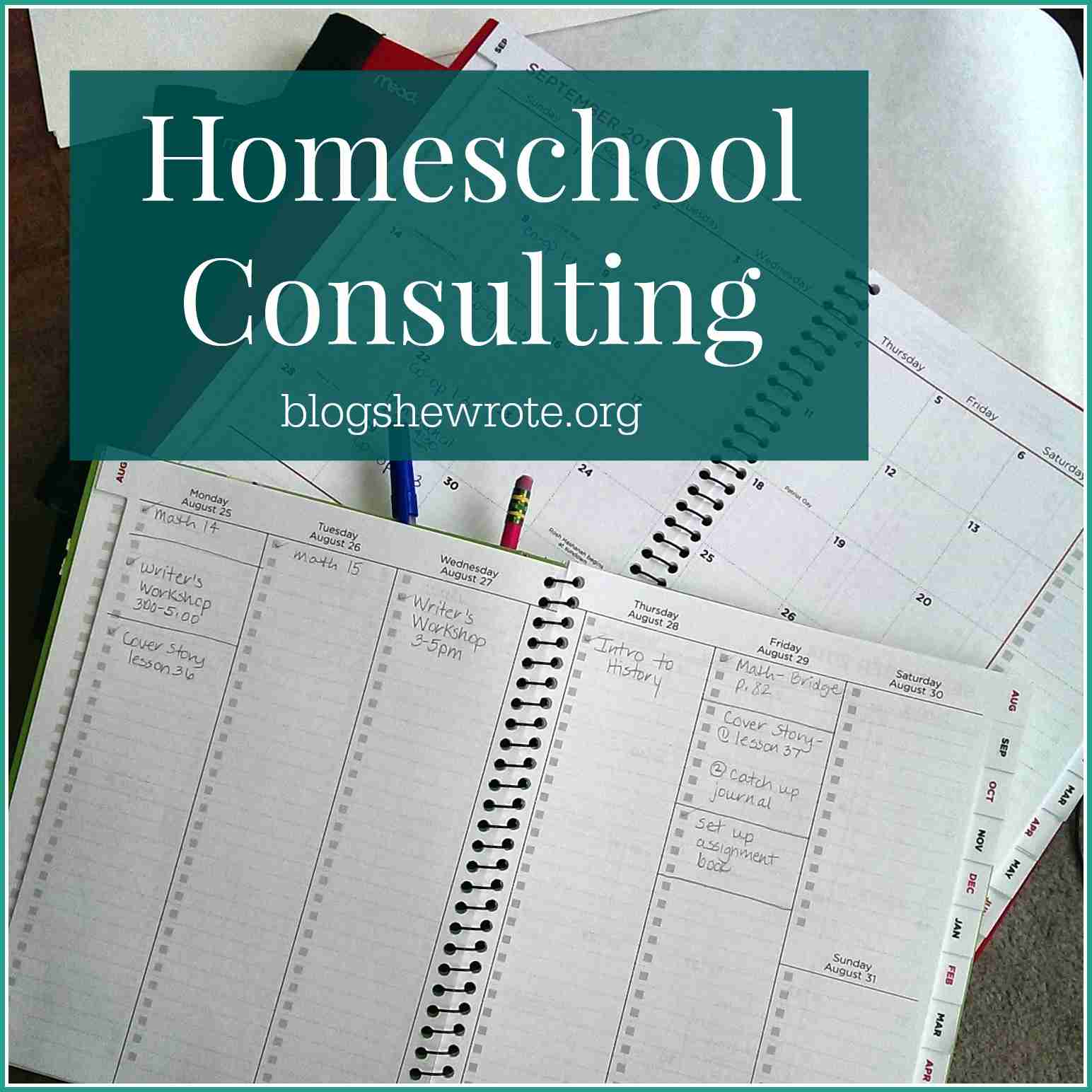 Blog, She Wrote: Homeschool Consulting