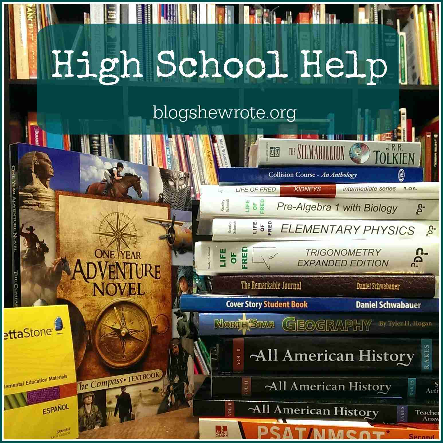 Blog, She Wrote: High School Help