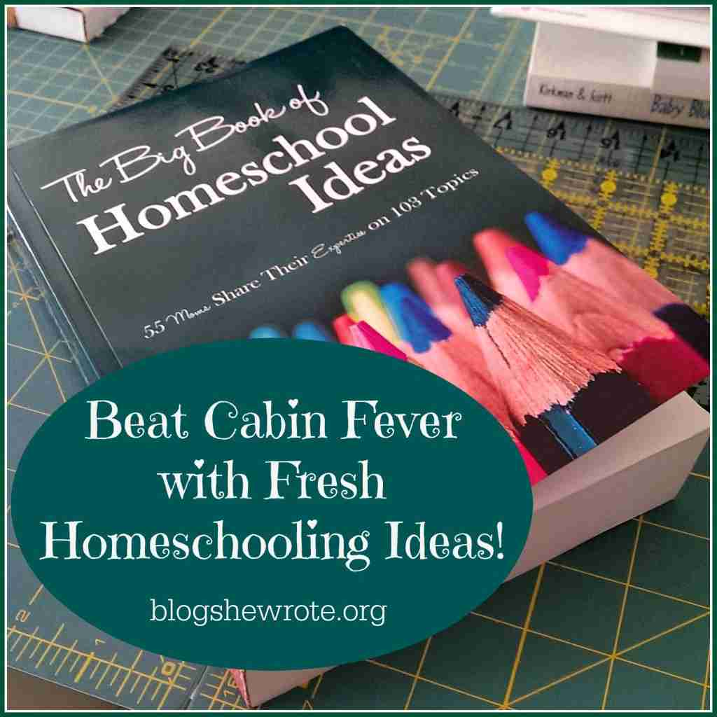 Beat Cabin Fever with Fresh Homeschooling Ideas