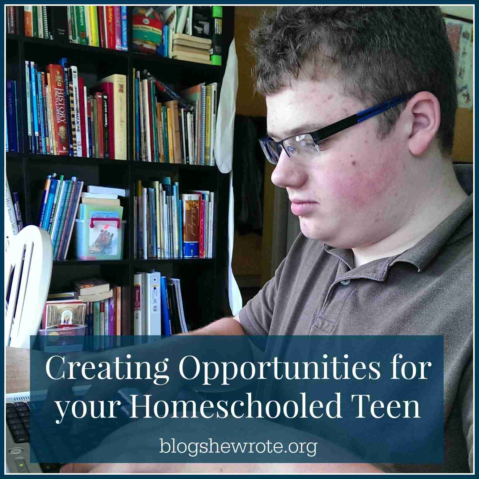 creating opportunities for your homeschooled teen blog she wrote