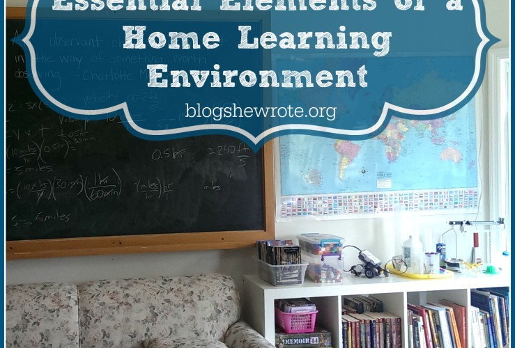 Essential Elements of a Home Learning Environment