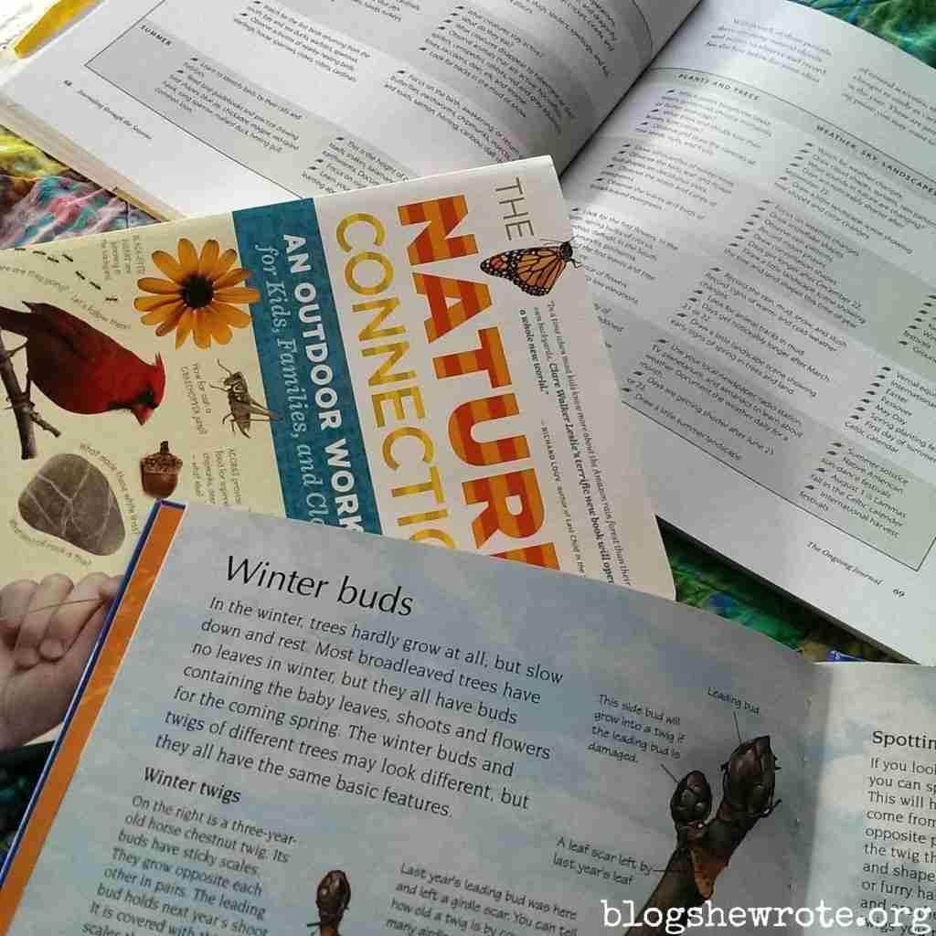 February 2016 Nature Journaling Calendar