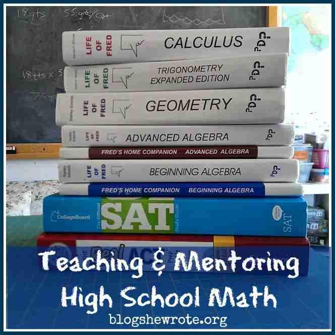 Teaching & Mentoring High School Math