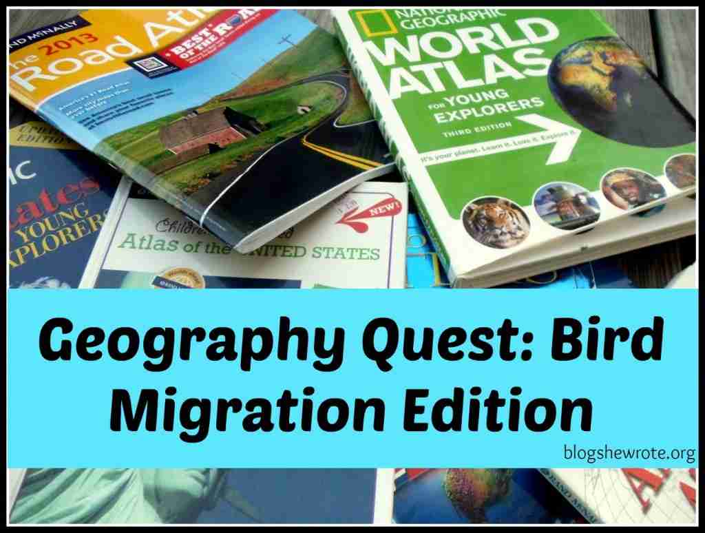 Geography Quest Bird Migration Edition
