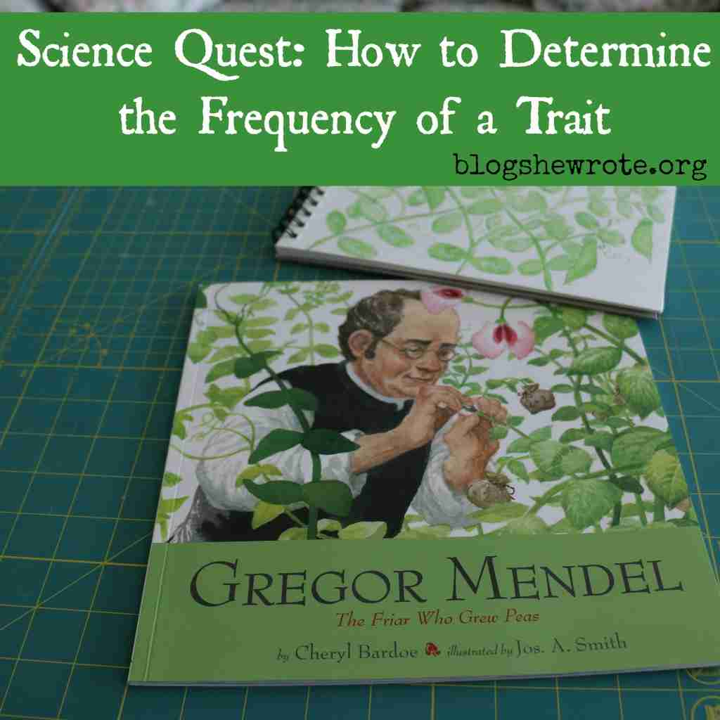 How to Determine the Frequency of a Trait