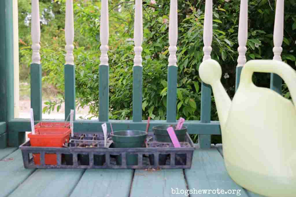 Gardening as a Tool for Teaching Science