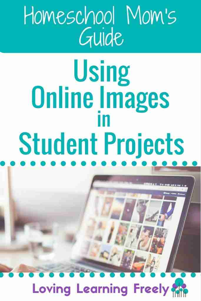 guide-using-online-images-683x1024
