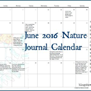 June Nature Journal Calendar