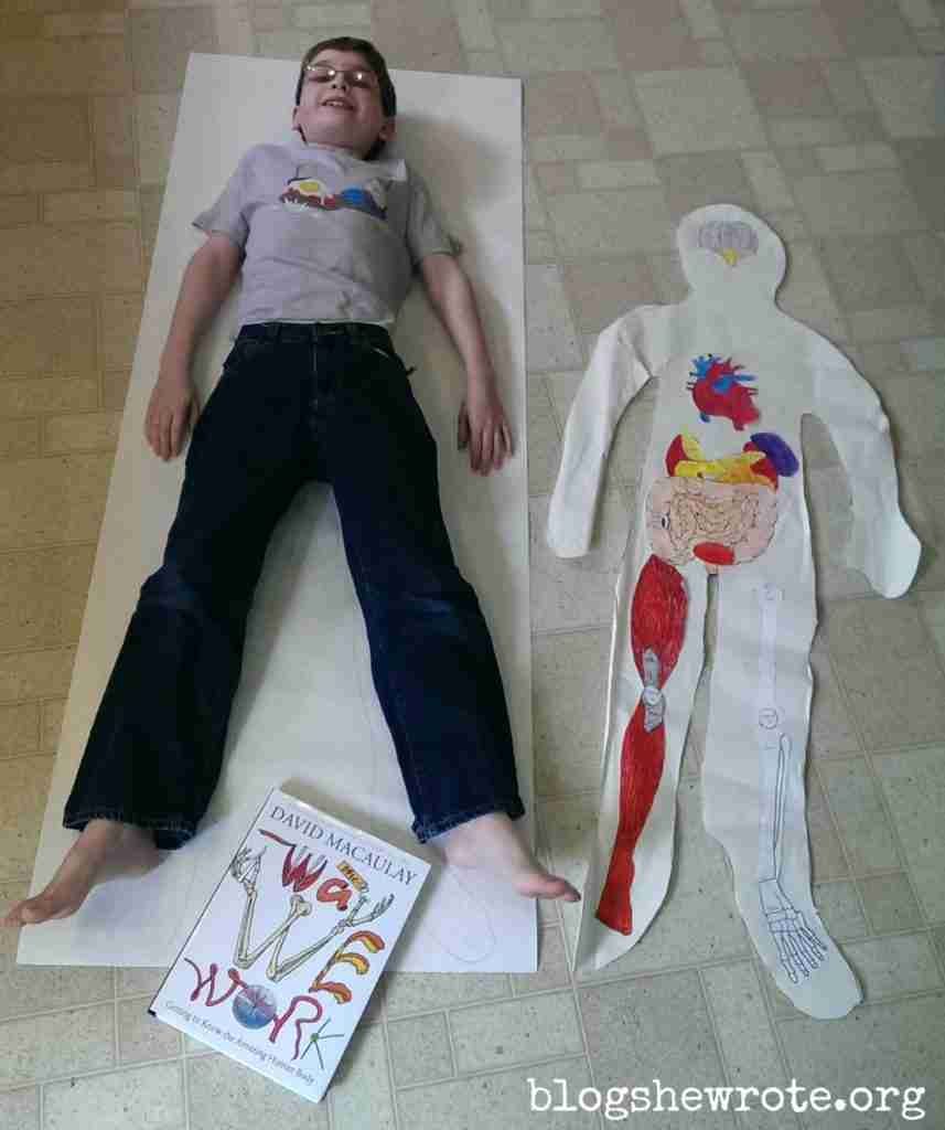 Illustrating the Human Body