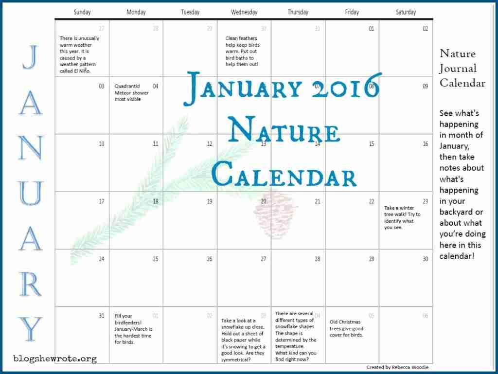 January Nature Journal Calendar