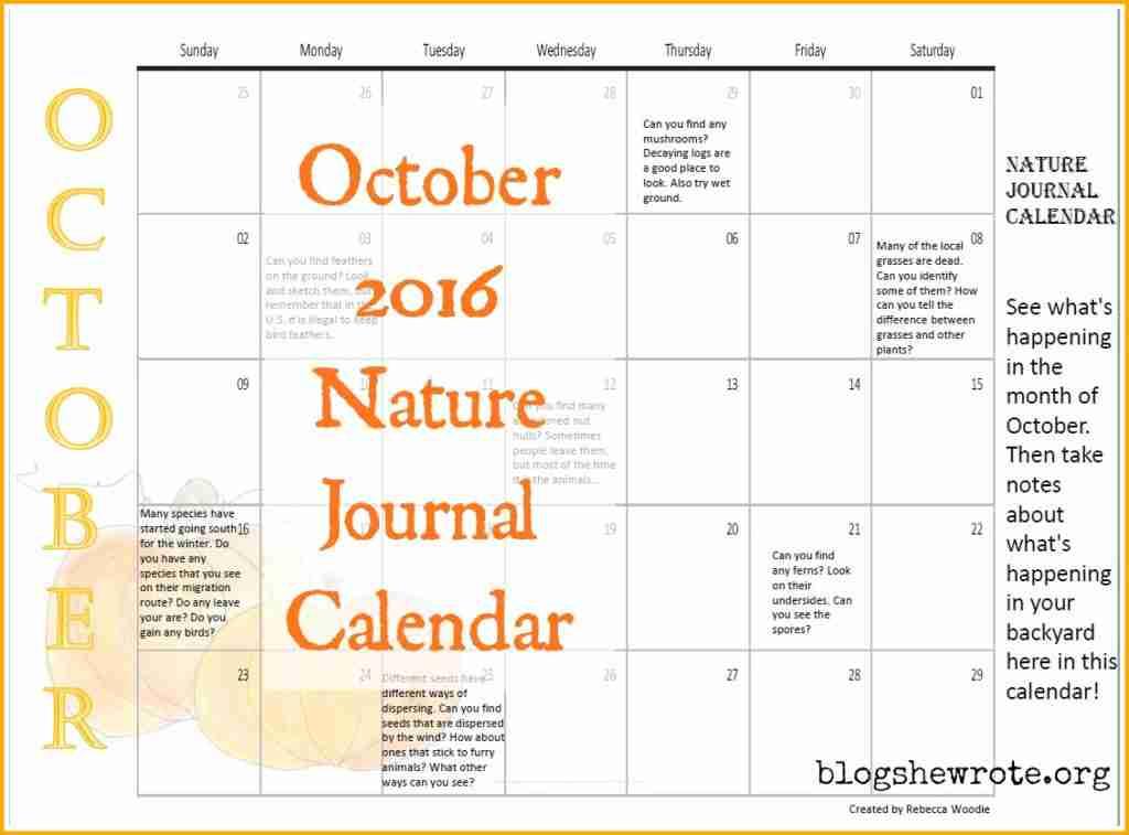 October Nature Journal Calendar