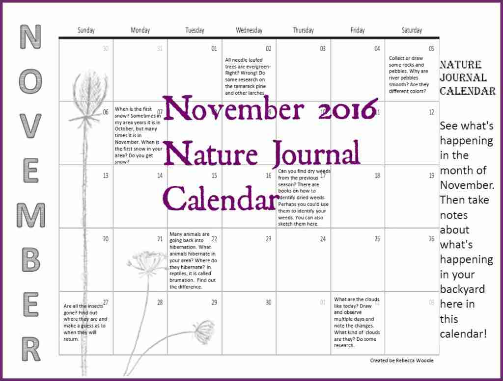 November Nature Journal Calendar