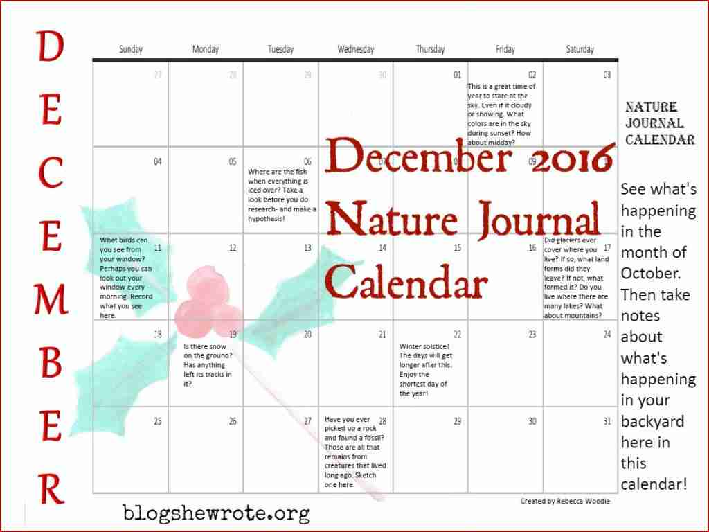 December Nature Journal Calendar