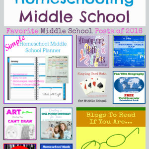Finishing Strong- Homeschooling the Middle & High School Years 111
