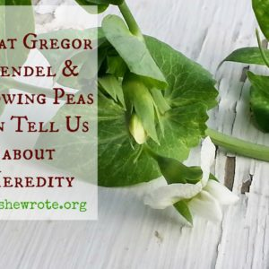 What Gregor Mendel & Growing Peas Can Teach Us about Heredity