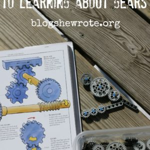 The Beginner's Guide to Learning about Gears
