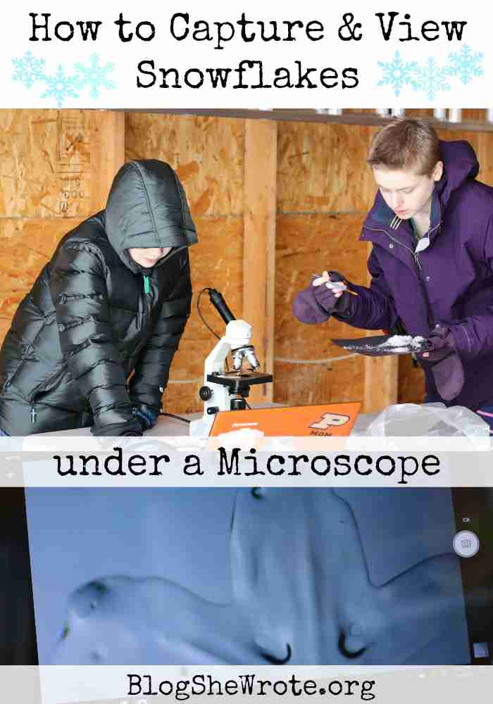 How to Capture & Observe Snowflakes 12-1 Students preparing snowflakes in a garage for viewing under the microscope along with a microscope image of a snowflake