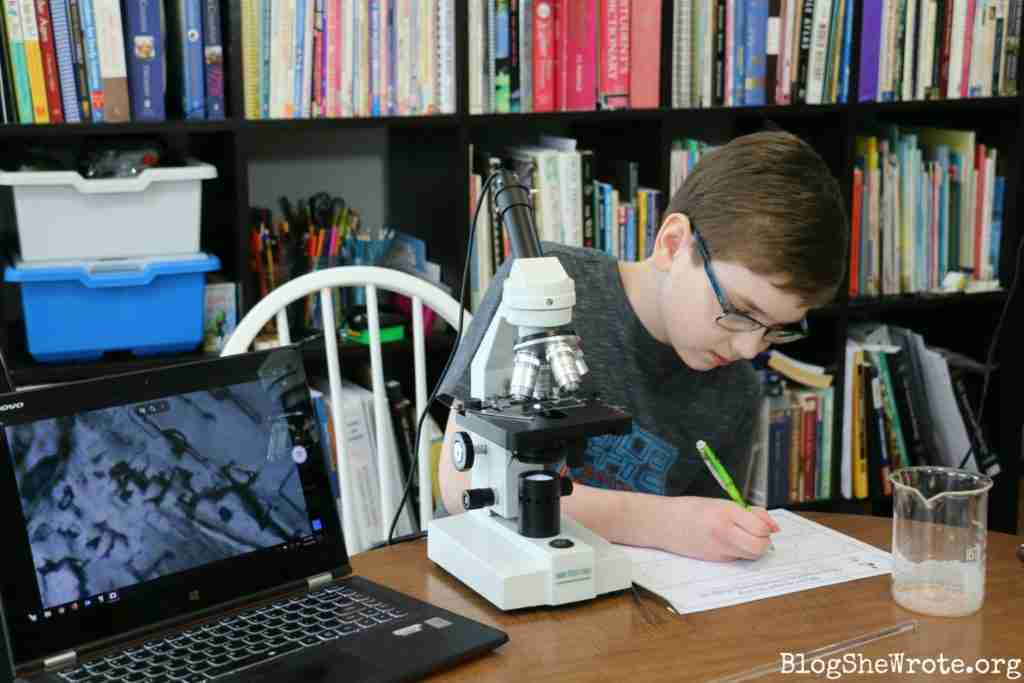 How to Observe Salt under a Microscope -teen boy drawing what he sees under a microscope