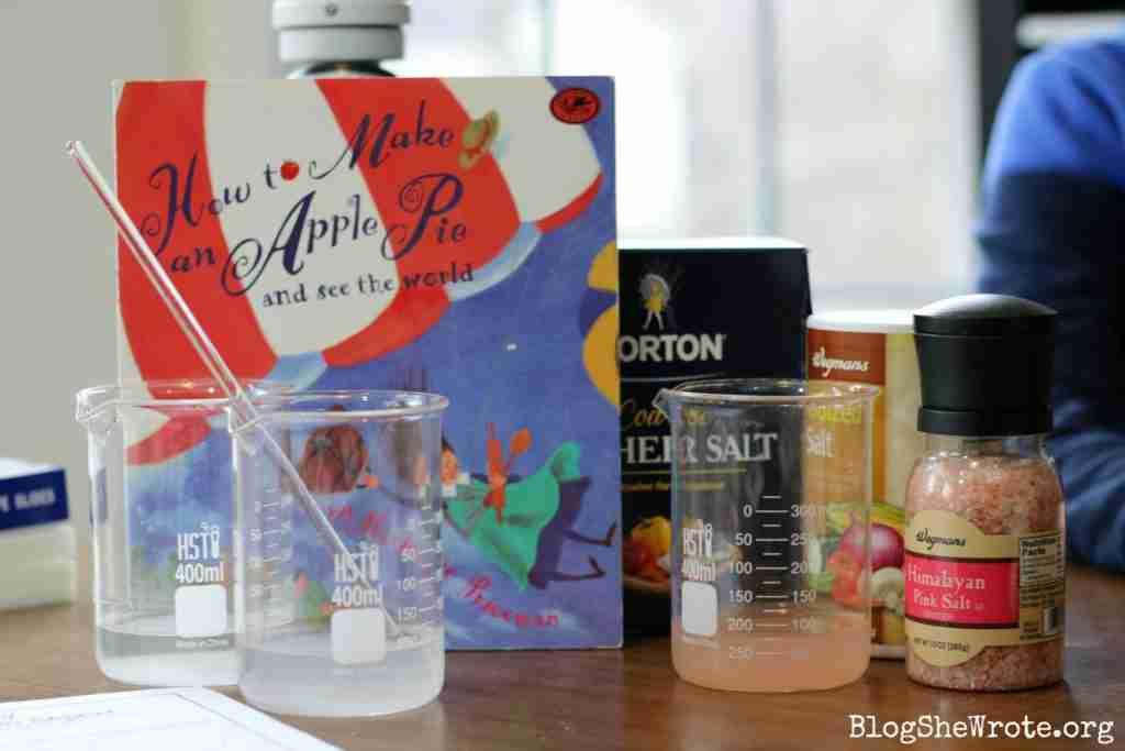How to Observe Salt under the Microscope- a set of materials on a table including a picture book called How to Make an Apple Pie and See the World