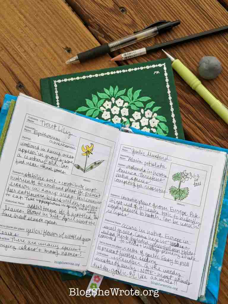 Plant Journaling Pages for Homeschoolers -open hand bound journal on a pile of plant books