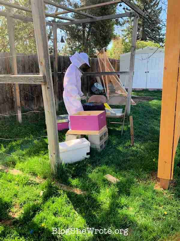 How a Project Based Approach Encourages Big Exploration- young beekeeper at work