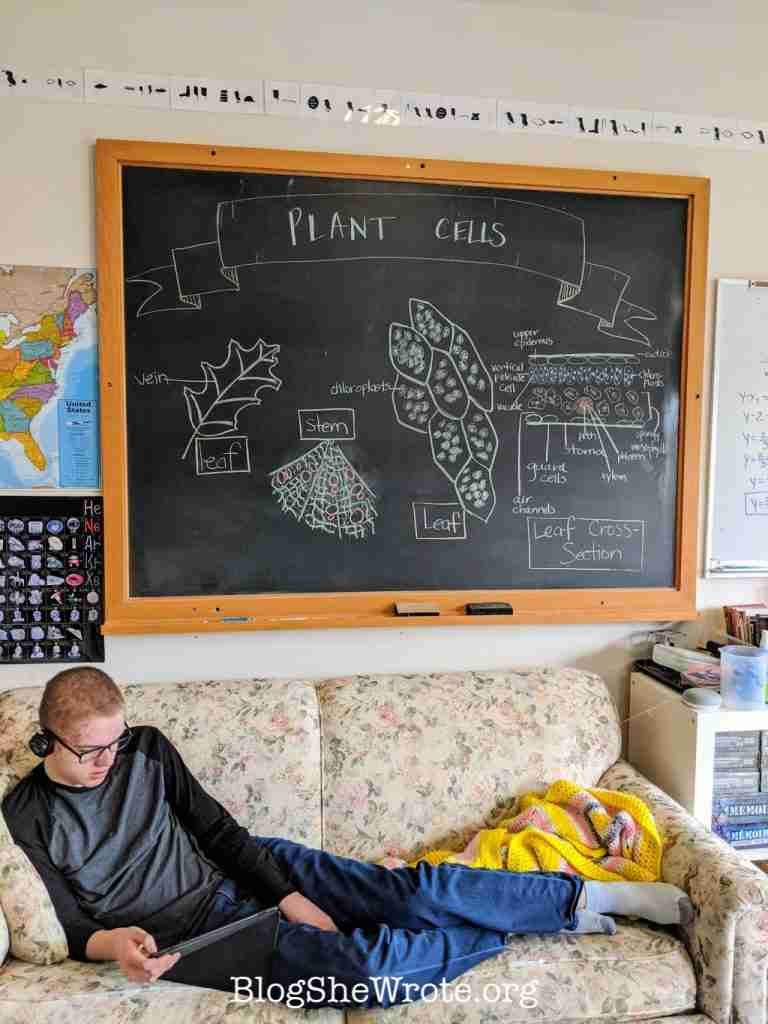 How to Avoid 7 Common Piftalls of Homeschooling High School Planning- teen reading on a sofa