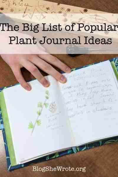 The Big List of Popular Plant Journal Ideas- open plant journal with a tamarack pine drawn in it