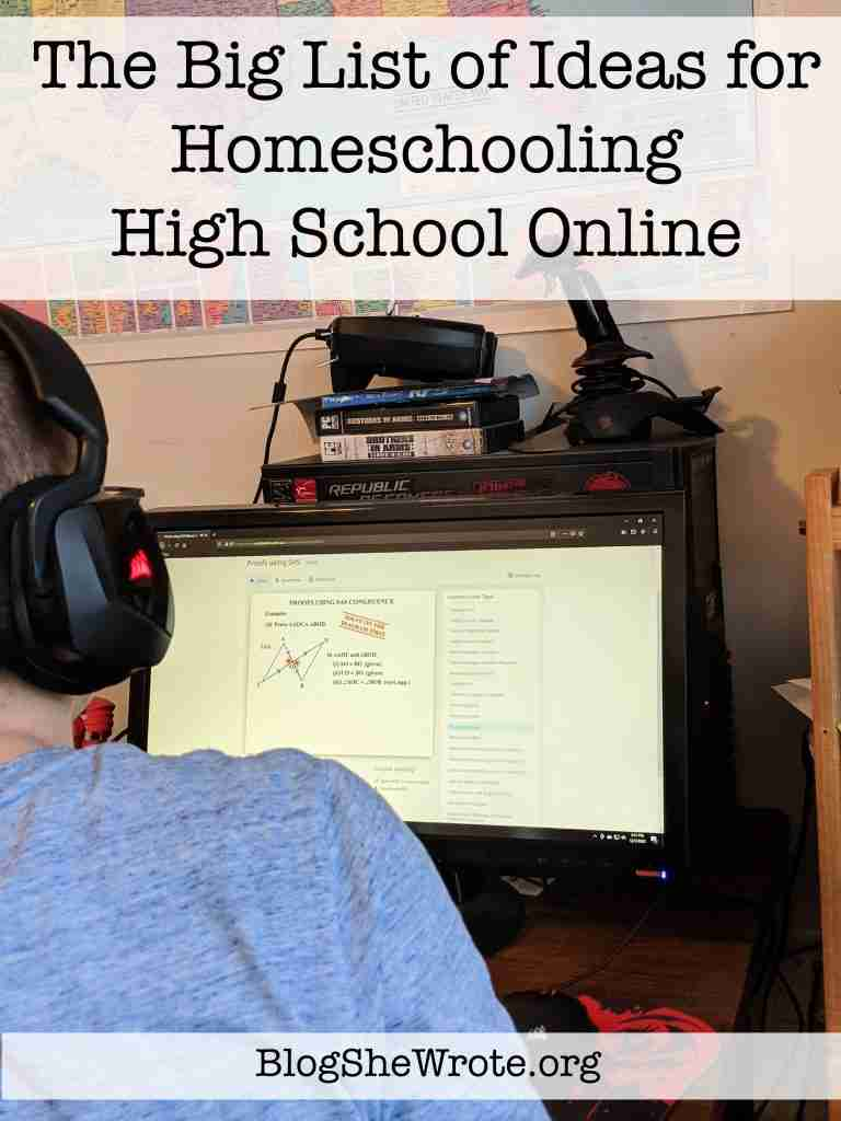 back of a teen taking a class at a computer